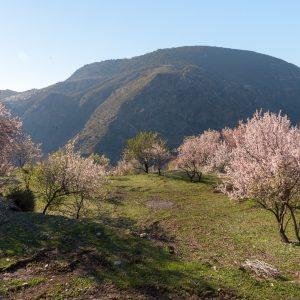 Alpujarras_hiking_tour-12