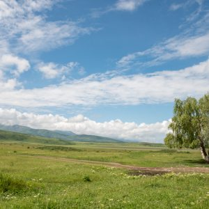 Steppe Altaï Kazachstan