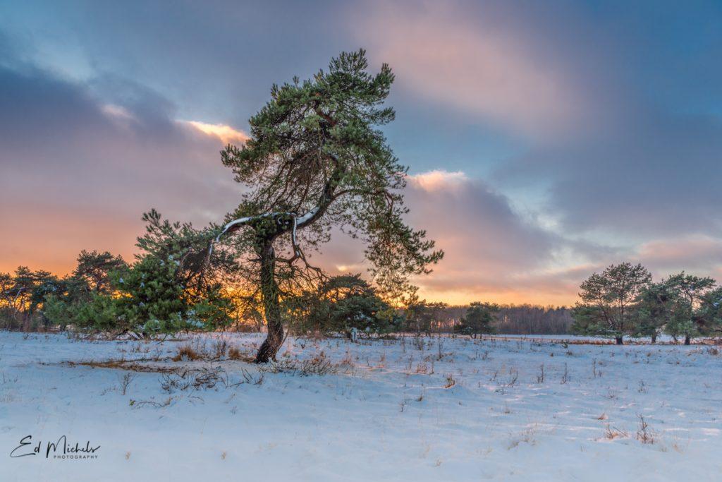 ondergaande zon over de sneeuw