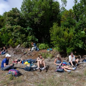 Madeira_hiking_tour-11
