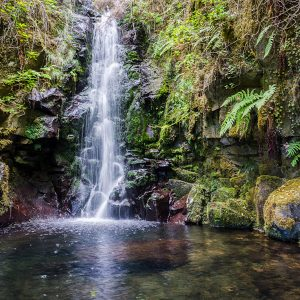 Madeira_hiking_tour-9